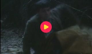 Kulderzipken: Aflevering 4 - Op drakenjacht