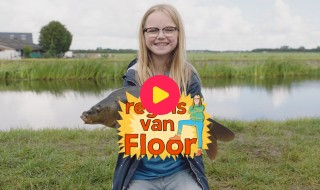 De regels van Floor