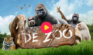 De zoo