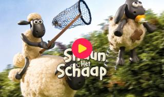 Shaun het schaap