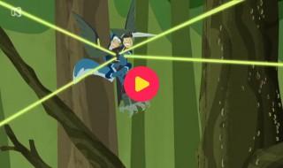 Kratts in het wild: Invasie van buitenaardse boomvreters