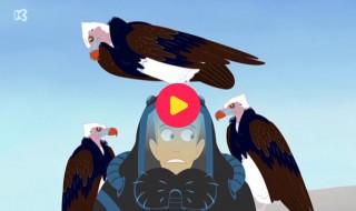 Kratts in het wild: De dierenkracht wedstrijd