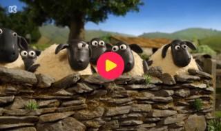 Shaun het schaap: Een beetje verliefd