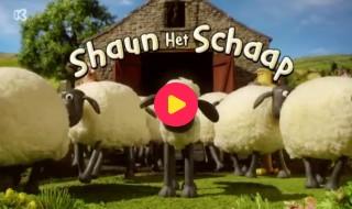 Shaun het schaap: Stoute jongen