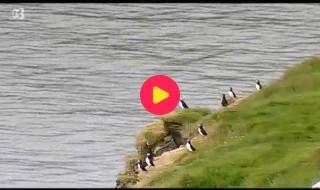 De wereld rond met Kaatje: Ijsland
