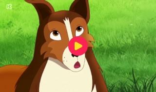 Lassie: Het geheim van de familie Bakker