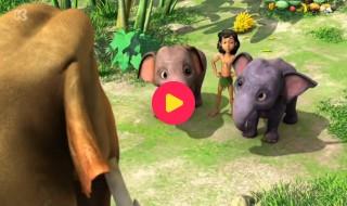 Jungle Book: Een onzichtbaar mensenkind