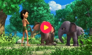 Jungle Book: De kapotte stok