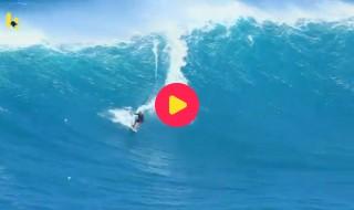 voertuigen: surfer