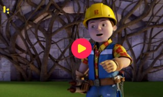 Bob de bouwer: Het zilveren schild