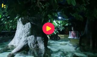 King Size Goeie Filmkes: Reeks 2 - Aflevering 15