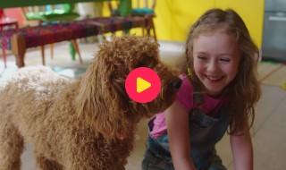 Waffie, de wonderhond: Aflevering 13 - Waffies hondenvriendjes