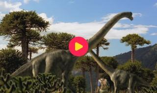 Andy's Dino Avonturen: Reeks 1 - Aflevering 16