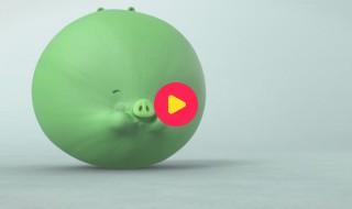Piggy Tales: Aflevering 13