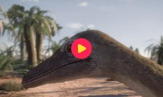 Andy's prehistorische avonturen: Reeks 1- Aflevering 25