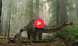Andy's Dino Avonturen: Reeks 1 - Aflevering 17