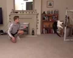Karrewiet: Deze kat kon eigenlijk helemaal niet keepen