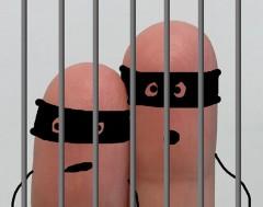 Karrewiet: Dievenbende opgepakt