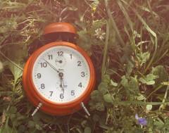 Karrewiet: Vannacht draaide de klok een uurtje vooruit