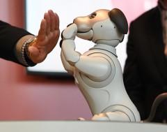 Karrewiet: Nieuwe robothond voorgesteld