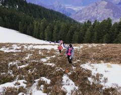 Karrewiet: Stijgende temperaturen doen skigebieden sluiten