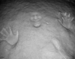 Karrewiet: Snowface challenge?