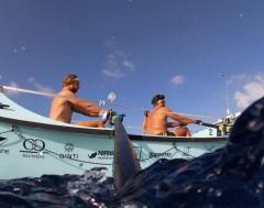 Karrewiet: Gentse broers Damien en Bernard roeien de Atlantische Oceaan over