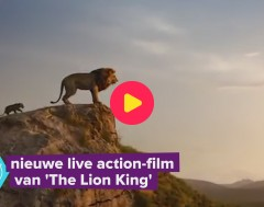 Karrewiet: Nieuwe live action-film van The Lion King