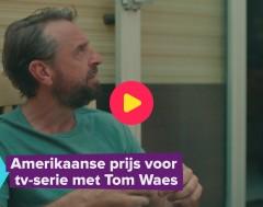 Karrewiet: prijs voor Tom Waes