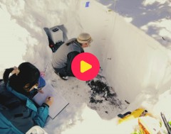 karrewiet: Belgische onderzoeker vertrekt op sneeuwexpeditie