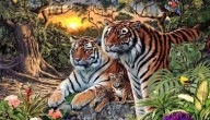 Zoek de 16 tijgers
