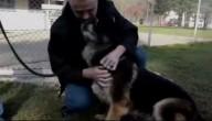 Hond en zijn baasje