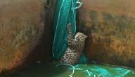 Luipaard in watertank