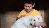 Ken en hondje