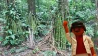 Maurice in het Amazonewoud