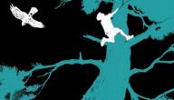 Brendon Chase - Drie jongens overleven in het bos