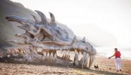 Schedel van draak aangespoeld