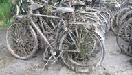 De Dijle lijkt wel een fietsenwinkel!
