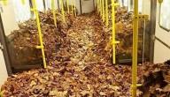 metro vol bladeren