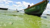 groen meer