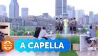 Stromae zingt a capella