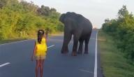 meisje & olifant