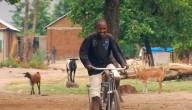 Technologie op het platteland