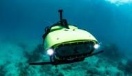 Gaat deze robot het grootste koraalrif ter wereld redden?