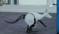 De robotkangoeroe