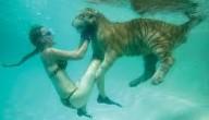 tijgerzwemmen