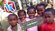 Karrewiet in Madagaskar