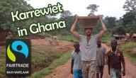 Karrewiet in Ghana