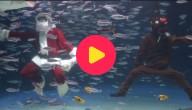 Kerstman in aquarium