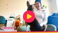 Sarah probeert haar hond Pablo trucjes te leren!